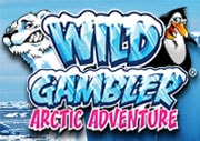Wild Gambler2 Arctic Adventure